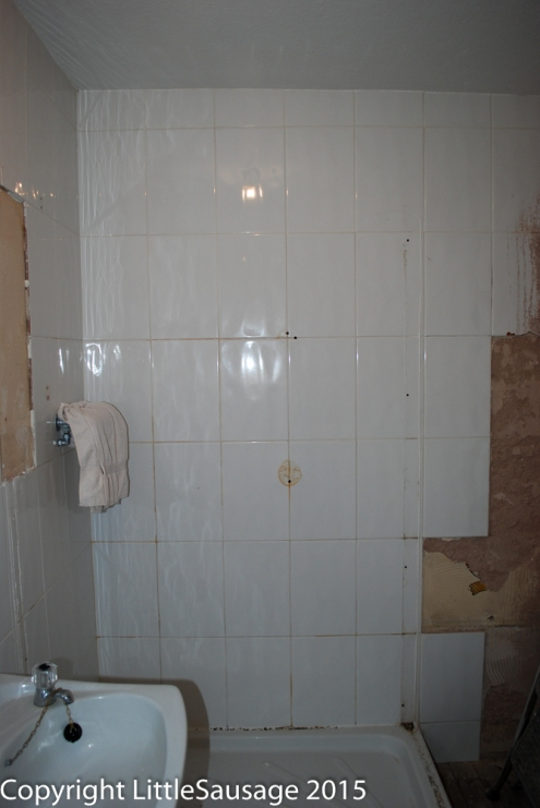 The old shower cubicle coming out.