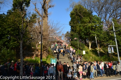 Hundreds of people waiting to cross the road to get from the station to the park.