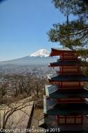 Pagoda and Fuji