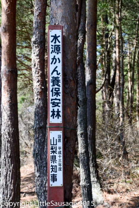 Another mysterious sign in the woods, anyone know what it says?