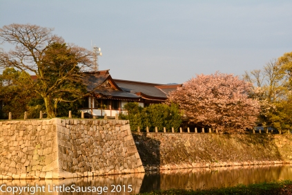 Walls around the castle grounds, very similar to those surrounding the Imperial Palace in Tokyo.
