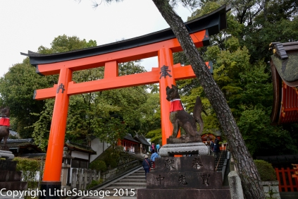 The start of the path up the hill to see all the torii gates.