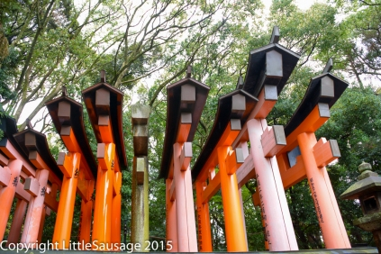 The very start of the torii gate path. It was very busy here so we hung around waiting for a lull in the rush.
