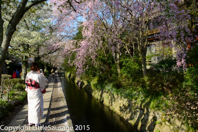 Many people were traditionally dressed enjoying the blossoms.